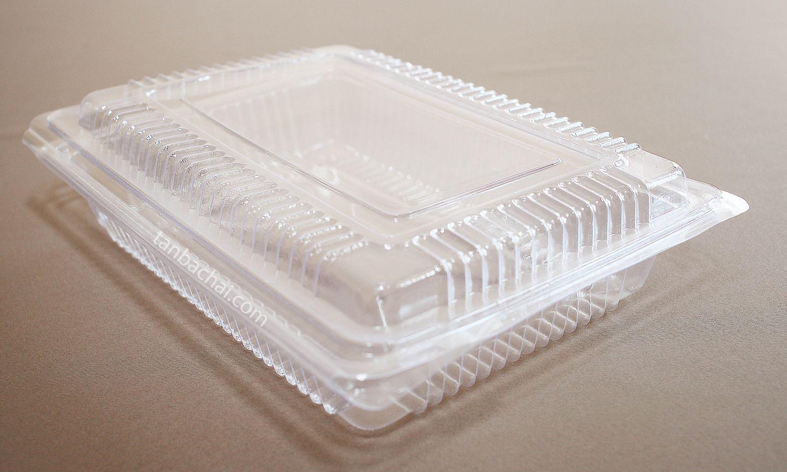 Hộp nhựa thực phẩm H100